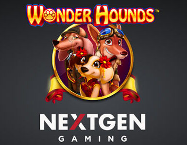 wonder hounds peli