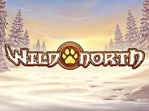 wild north slotti
