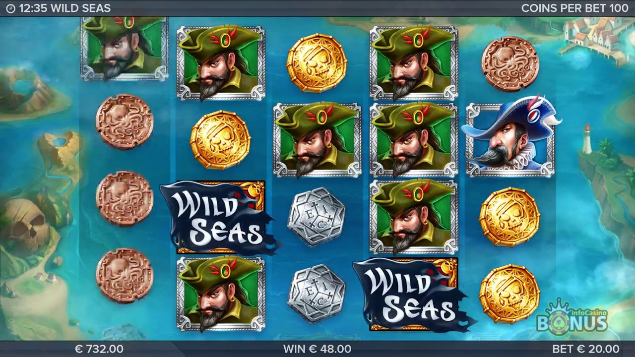 Wild Seas peliruutu