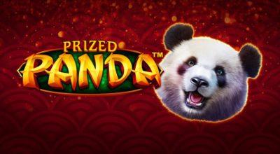 Prized panda slotti