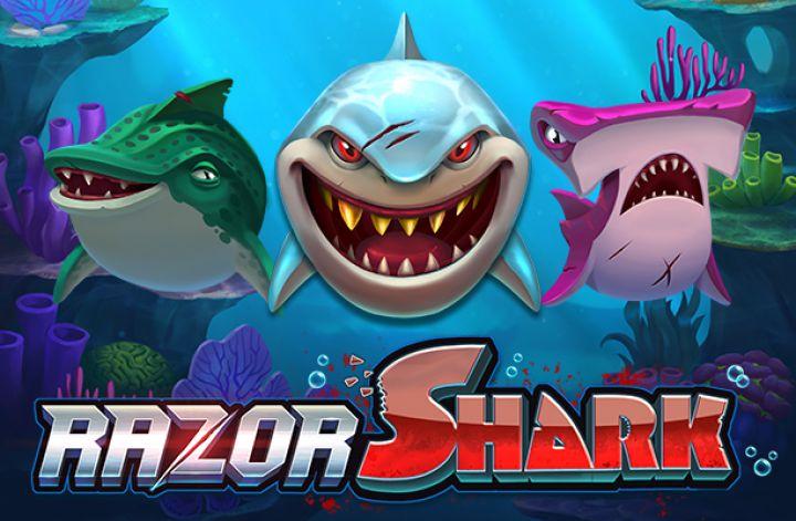 razor shark slotti
